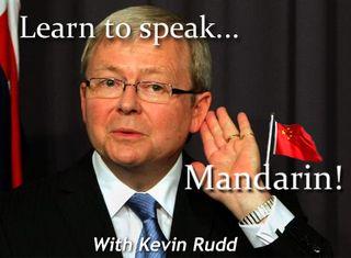 Mandarin rudd