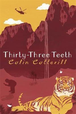 33 teeth